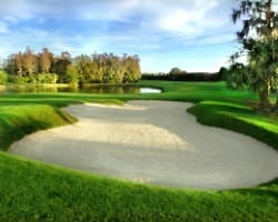 Tampa St Petersburg- GOLF travel-Carrollwood Country Club - Meadow Course