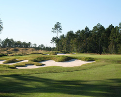Myrtle Beach- GOLF travel-Sea Trail Plantation amp Golf - Maple Course