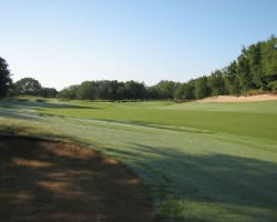 Orlando-Golf expedition-Mystic Dunes Golf Club-Daily Rate