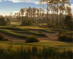 Jacksonville St Augustine-Golf travel-Golf Club at North Hampton-Daily Round