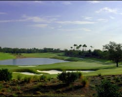 Orlando-Golf trek-Reunion Golf Resort - Tradition Course-Daily Rate