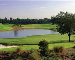 Orlando-Golf trip-Reunion Golf Resort - Tradition Course-Daily Rate