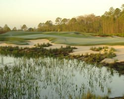 Naples Fort Myers- GOLF excursion-Old Corkscrew Golf Club-Daily Rate