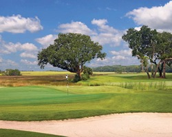 Jacksonville St Augustine-Golf tour-Oak Marsh at Amelia Island Plantation-Daily Rate