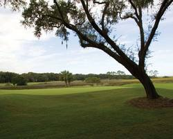 Jacksonville St Augustine- Special tour-Amelia Island GOLF LOVERS Stay and Play - 244 per day -Amelia Island Golf Lovers Stay Play