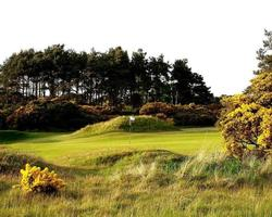 St Andrews amp Fife-Golf trip-Panmure-Green Fee