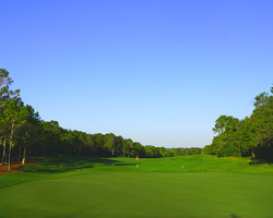 Orlando- GOLF vacation-Orange County National - Panther Lake-Daily Rate