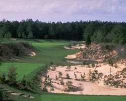 Nature Coast Golf Trail- GOLF holiday-World Woods Golf Club - Pine Barrens