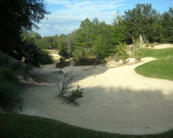 Nature Coast Golf Trail- GOLF tour-World Woods Golf Club - Pine Barrens