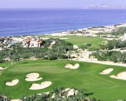 Cabo San Lucas- GOLF expedition-Puerto Los Cabos-Daily Rate