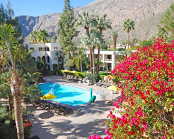 Palm Springs- LODGING trek-Palm Mountain Resort Spa - Downtown Palm Springs-Standard Room
