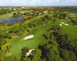 Naples Fort Myers-Golf expedition-Pelican s Nest Golf Club - Gator Course