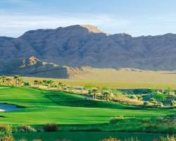Las Vegas-Golf tour-Primm Valley Golf Club - Desert Course-Daily Rate