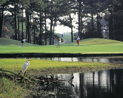 Myrtle Beach-Golf vacation-Possum Trot Golf Club