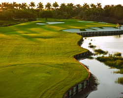 Naples Fort Myers- GOLF outing-The Rookery at Marco-Daily Rate