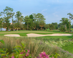 Naples Fort Myers- GOLF trek-The Rookery at Marco-Daily Rate