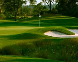 Charleston- GOLF expedition-RiverTowne Country Club