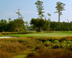 Charleston- GOLF trek-RiverTowne Country Club
