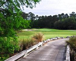 Myrtle Beach- GOLF expedition-River Hills Golf Club