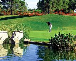 Phoenix Scottsdale- GOLF holiday-Raven Golf Club - Phoenix-Daily Rate