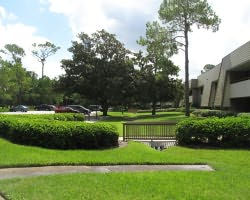 Tampa St Petersburg-Lodging tour-Innisbrook Golf Spa Resort - Special Stay Play Packages-1 Bedroom 2 Golfer