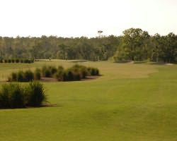 Orlando-Golf outing-Stonegate Golf Club - Oaks Course-Daily Rate