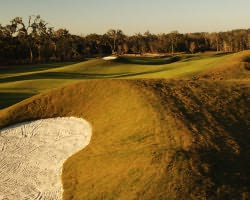 Tampa St Petersburg- GOLF excursion-Southern Hills Plantation-Daily Rate