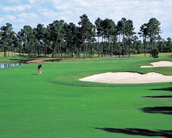 Myrtle Beach-Golf holiday-Sandpiper Bay