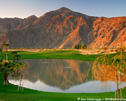 Palm Springs-Golf travel-SilverRock Resort-Arnold Palmer Classic Course
