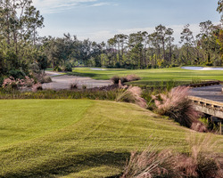 Naples Fort Myers-Golf expedition-Tiburon Golf Club - Black Course