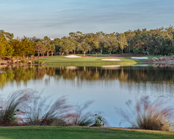 Naples Fort Myers-Golf travel-Tiburon Golf Club - Black Course-Daily Rate