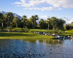 Palm Springs-Golf trip-Tahquitz Creek - Resort-Daily Rate