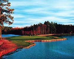 Orlando-Golf expedition-Timacuan Golf Country Club-Daily Rate