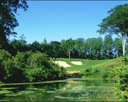 Williamsburg-Golf tour-Traditions at Stonehouse-Daily Rate