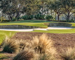 Naples Fort Myers- GOLF weekend-Tiburon Golf Club - Gold Course-Daily Rate