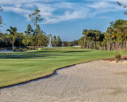 Naples Fort Myers- GOLF expedition-Tiburon Golf Club - Gold Course-Daily Rate