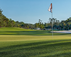 Naples Fort Myers- GOLF travel-Tiburon Golf Club - Gold Course-Daily Rate