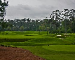 Jacksonville St Augustine- GOLF expedition-TPC Sawgrass - THE PLAYERS Stadium Course