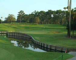 Jacksonville St Augustine- GOLF outing-TPC Sawgrass - THE PLAYERS Stadium Course