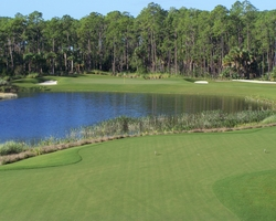 Naples Fort Myers-Golf tour-TPC Treviso Bay-Daily Rate