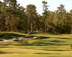 Daytona- GOLF tour-Victoria Hills Golf Club-Daily Rate