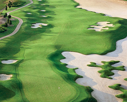 Orlando- GOLF holiday-Reunion Golf Resort - Watson Course-Daily Rate