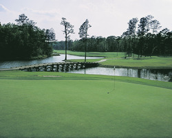 Myrtle Beach-Golf trek-Witch Golf Course