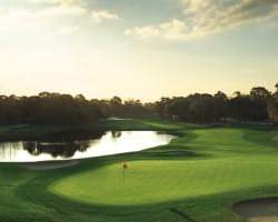Tampa St Petersburg-Golf expedition-Innisbrook - Copperhead-Daily Rate