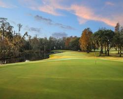Tampa St Petersburg- GOLF holiday-Innisbrook - Island Course-Daily Rate