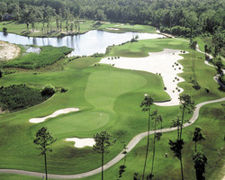 Myrtle Beach- GOLF vacation-Willbrook Plantation