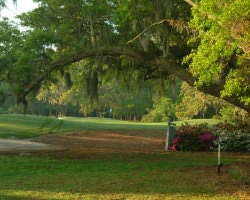 Myrtle Beach- GOLF tour-Willbrook Plantation