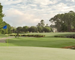 Jacksonville St Augustine-Golf expedition-Windsor Parke Golf Club-Daily Round
