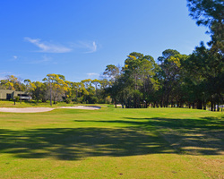 Tampa St Petersburg- GOLF excursion-Innisbrook - Highlands South