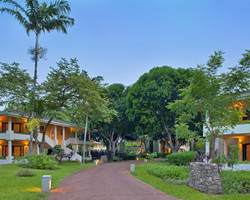 Costa Rica- Special outing-Peak Season Special - All-Inclusive Stay Play at Westin Playa Conchal Resort for 436 per day -Peak Season All-Inclusive Stay Play